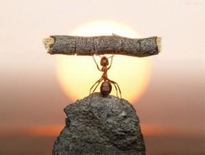 цели, достижение, целей, успеха