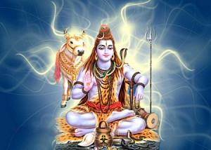 шиваратри 2014 mahashiva