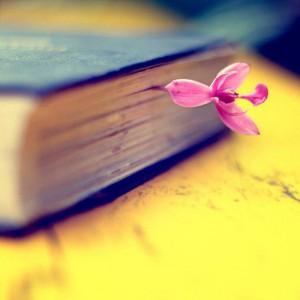 миссия, успех и страсть, отрывок из книги